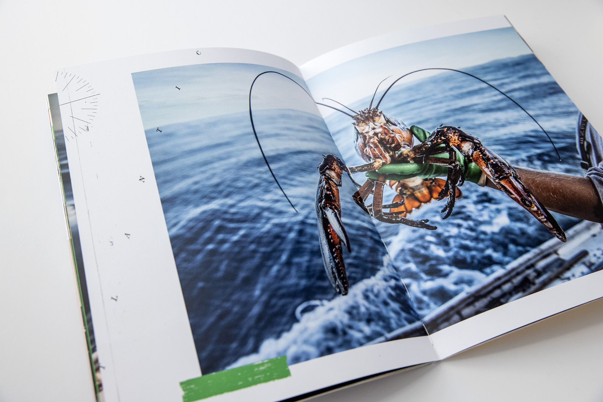 Tadd Myers promo booklet of the Lobstermen of Little Cranberry Island with a lobster up close